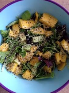 mango salade LR